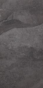 Pastorelli Denverstone De Anthracite RETT 40x80-0