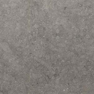 Floorgres Floortech 8.0 739689 60x60-0